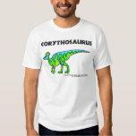 Corythosaurus Playeras