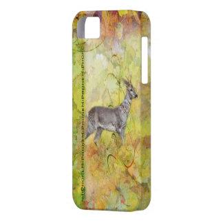 Corzo en el bosque de arte Case iPhone Funda Para iPhone 5 Barely There