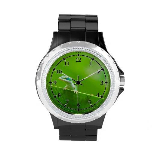 Cosa linda de Anole del encuentro verde del lagart Reloj