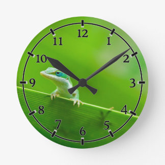 Cosa linda de Anole del encuentro verde del lagart Relojes