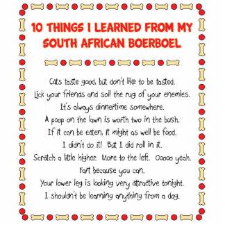Cosas divertidas I aprendido de Boerboel surafrica Esculturas Fotograficas