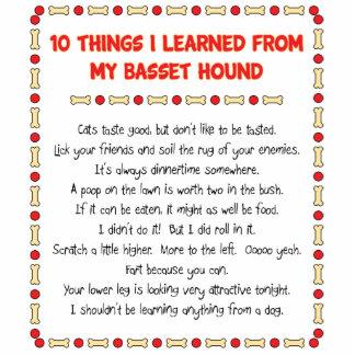 Cosas divertidas I aprendido de mi Basset Hound Escultura Fotográfica