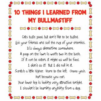 Cosas divertidas I aprendido de mi Bullmastiff Escultura Fotografica