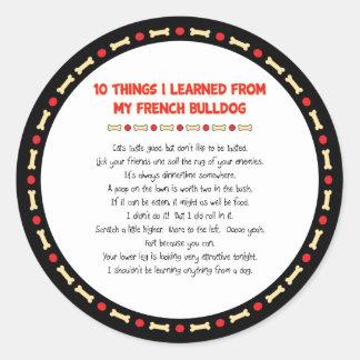 Cosas divertidas I aprendido de mi dogo francés
