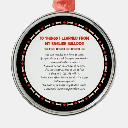 Cosas divertidas I aprendido de mi dogo inglés Adorno De Reyes
