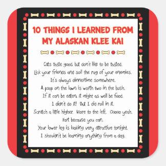 Cosas divertidas I aprendido de mi Klee de Alaska Pegatina Cuadrada