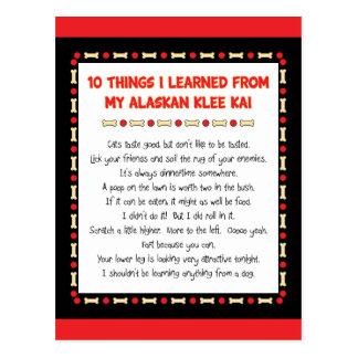 Cosas divertidas I aprendido de mi Klee de Alaska Tarjetas Postales