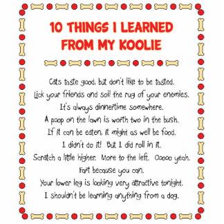 Cosas divertidas I aprendido de mi Koolie Escultura Fotográfica