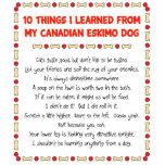 Cosas divertidas I aprendido de mi perro esquimal  Escultura Fotografica