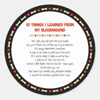 Cosas divertidas I aprendido de mi sabueso Etiquetas Redondas