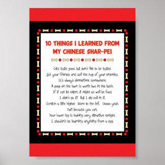 Cosas divertidas I aprendido de mi Shar-Pei chino Póster