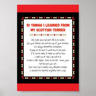 Cosas divertidas I aprendido de mi Terrier escocés Posters