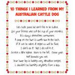 Cosas divertidas I aprendido de perro australiano  Escultura Fotográfica