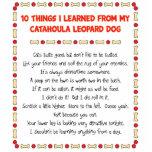 Cosas divertidas I aprendido de perro del leopardo Esculturas Fotográficas