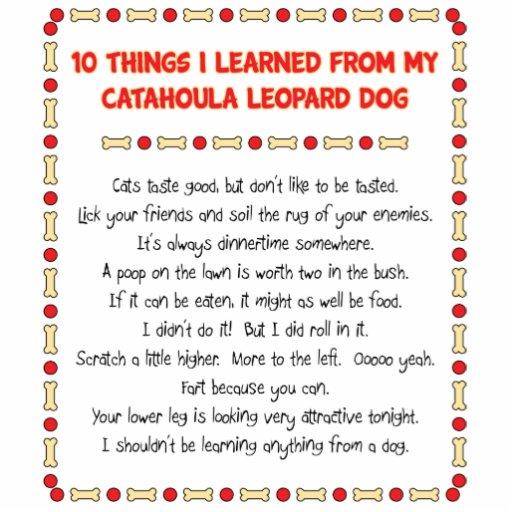 Cosas divertidas I aprendido de perro del leopardo Fotoescultura Vertical