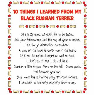Cosas divertidas I aprendido del ruso negro Terrie Escultura Fotográfica