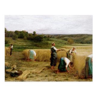 Cosecha, 1874 tarjetas postales