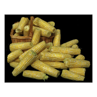 Cosecha de maíz posters
