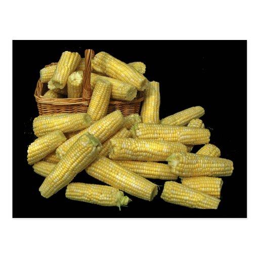 Cosecha de maíz postal