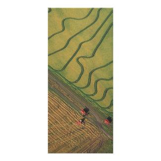 Cosecha del arroz lona publicitaria
