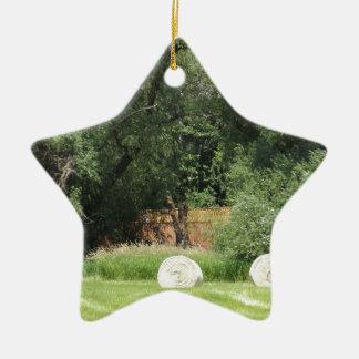 Cosecha del heno adorno navideño de cerámica en forma de estrella