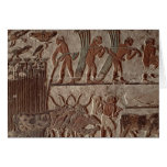 Cosecha del papiro y de un grupo de vacas tarjeta de felicitación