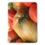 Cosecha del tomate de la herencia anuncio