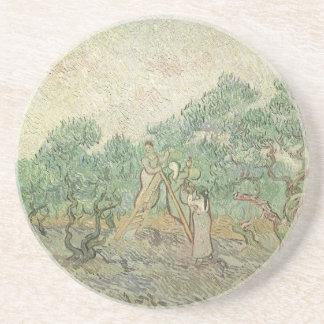 Cosecha verde oliva de Vincent van Gogh, arte del Posavasos Para Bebidas