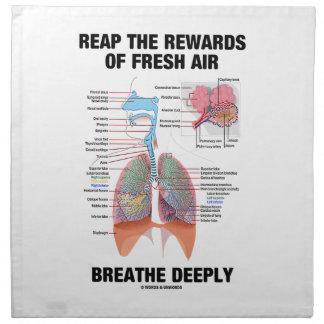 Coseche las recompensas del aire fresco respiran p servilletas