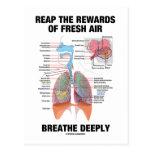 Coseche las recompensas del aire fresco respiran postales