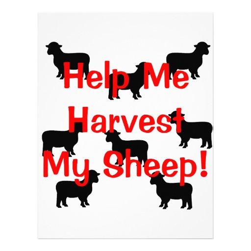 Coseche mis ovejas membrete