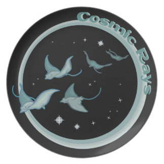 Cosmic Rays Dinner Plate