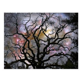 Cosmic Tree - Colliding Galaxies Postcard