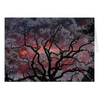 Cosmic Tree - Milky Way Center Card
