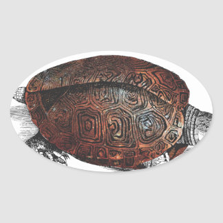 Cosmic turtle 1 oval sticker