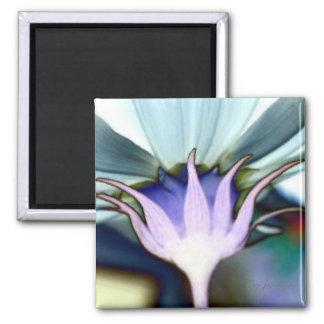 Cosmo 2 Inch Square Magnet
