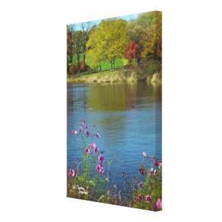 Cosmo flowers lake Canvas Print