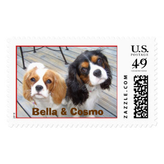 & Cosmo Postage