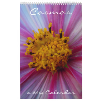 Cosmos 2014 calendario