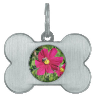 Cosmos and Bumble Bee Pet Name Tags