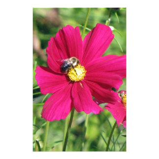 Cosmos and Bumble Bee Stationery