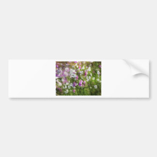 Cosmos Dancing in the Wind Gifts Car Bumper Sticker
