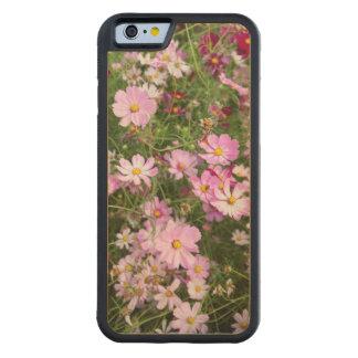 Cosmos Flower (Bidens Formosa). Kirkwood Carved® Maple iPhone 6 Bumper