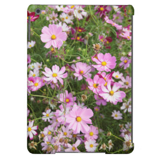 Cosmos Flower (Bidens Formosa). Kirkwood Cover For iPad Air