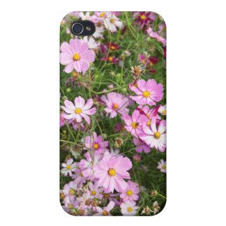 Cosmos Flower (Bidens Formosa). Kirkwood iPhone 4 Case