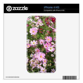 Cosmos Flower (Bidens Formosa). Kirkwood Skin For iPhone 4S