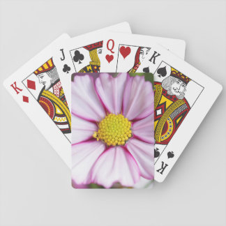 Cosmos Flower (bidens formosa) Playing Cards