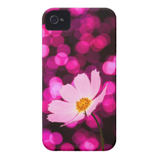 Cosmos flower case iPhone 4 cover