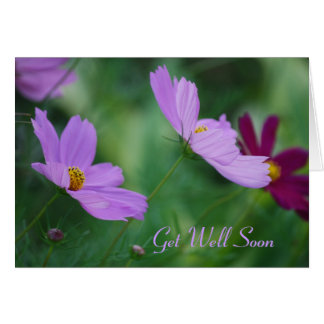 Cosmos flower get well card