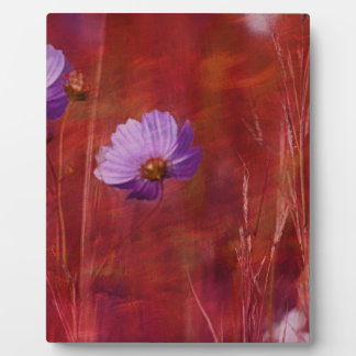 Cosmos Flower Gifts Plaque
